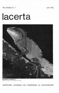 Lacerta30-07
