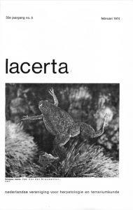Lacerta32-05