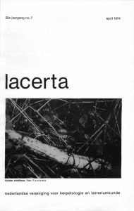 Lacerta32-07