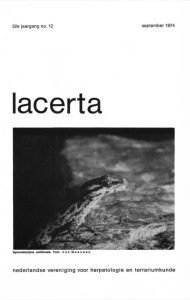 Lacerta32-12