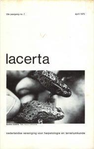 Lacerta33-07
