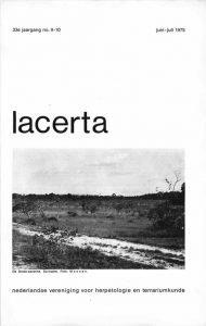 Lacerta33-09-10