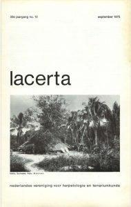 Lacerta33-12