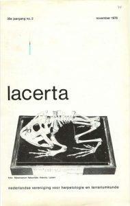 Lacerta3502