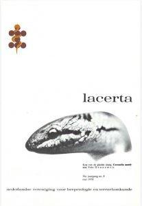 Lacerta3608