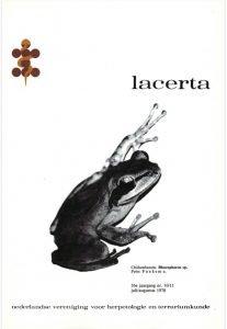 Lacerta361011