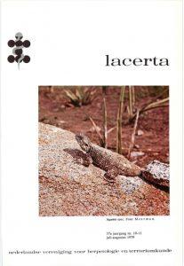 Lacerta3701011