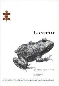 Lacerta3704