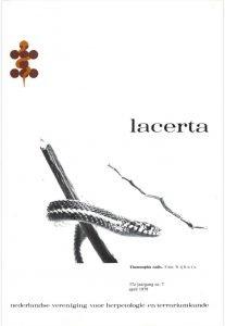 Lacerta3707