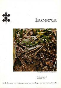 Lacerta3802