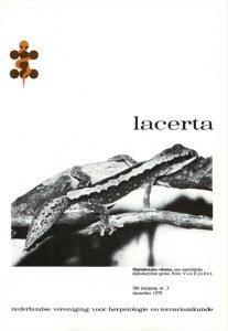 Lacerta3803