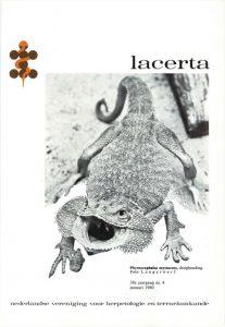 Lacerta3804