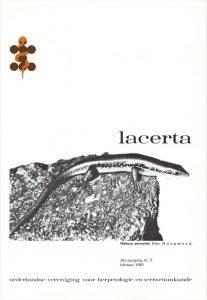 Lacerta3805