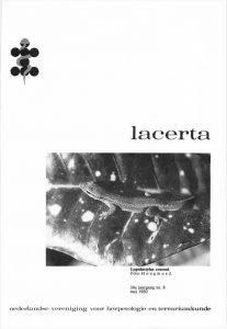 Lacerta3808