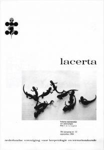 Lacerta3812