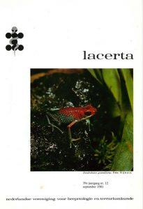 Lacerta39012