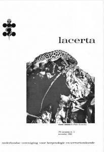 Lacerta3902