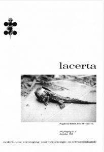 Lacerta3903