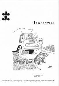 Lacerta3904