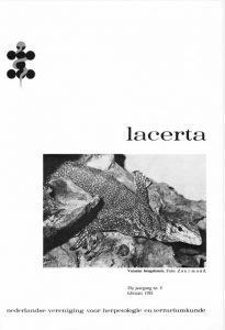 Lacerta3905