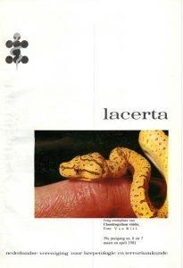 Lacerta390607