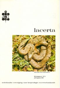 Lacerta401011