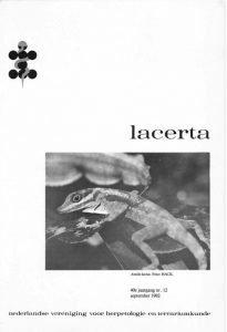 Lacerta4012