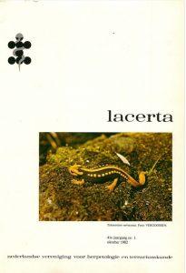 Lacerta4101