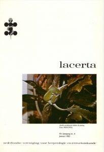 Lacerta4104