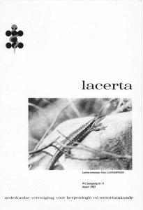 Lacerta4106