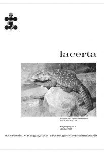 Lacerta4201