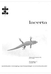 Lacerta4202