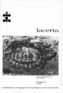 Lacerta4208