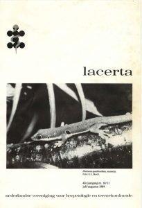 Lacerta421011