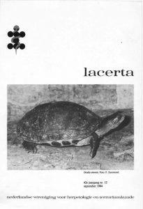 Lacerta4212