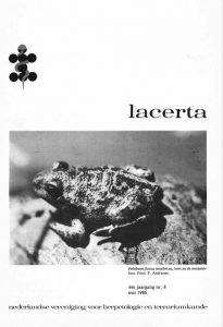 Lacerta44-08