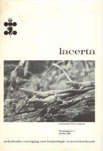 lacerta4301