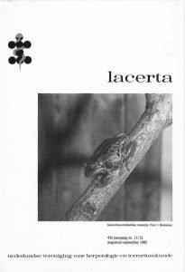 lacerta431112