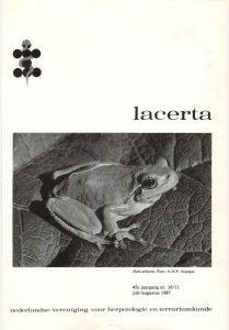 lacerta4510-11